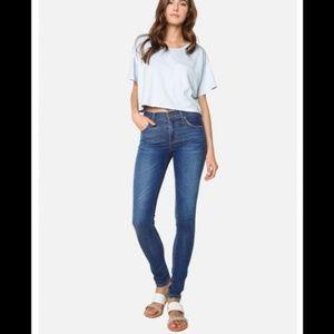 James Jeans Twiggy Skinny Ankle Jeans